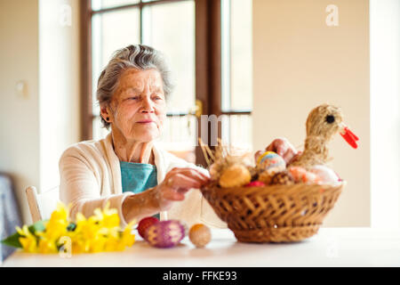 Senior woman arranging basket with Easter eggs and daffodils - Stock Photo