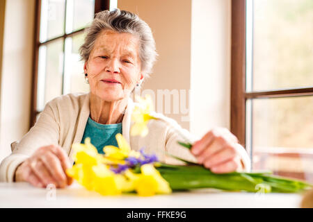 Senior woman by the window arranging bouquet of daffodils - Stock Photo