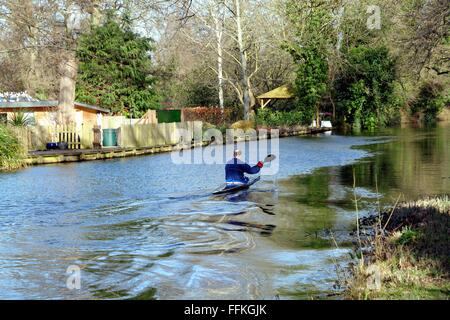 Single male canoing  on the River Wey navigation Byfleet Surrey - Stock Photo