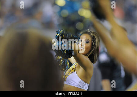 Jacksonville, FL, USA. 24th Aug, 2013. Jacksonville Jaguars cheerleader during a preseason NFL game against the - Stock Photo