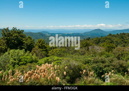 View of Lake Taupo from near Kuratau, Waikato, New Zealand - Stock Photo