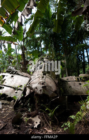 Zero, Japanese fighter airplane, wreck in jungle. Battle of Peleliu, Palau 1944, fought between the US and Japan - Stock Photo