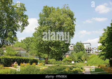 geography / travel, France, Paris, Bercy, Parc de Bercy, Additional-Rights-Clearance-Info-Not-Available - Stock Photo