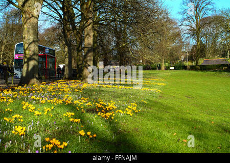 Leeds, UK. 16th Feb, 2016. As the school half term continues a cold but sunny day gave families the chance to visit - Stock Photo