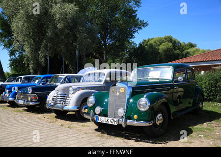 Mercedes, Oldtimer meeting, Bleckede / Elbe, Lower Saxony, Germany, Europe - Stock Photo