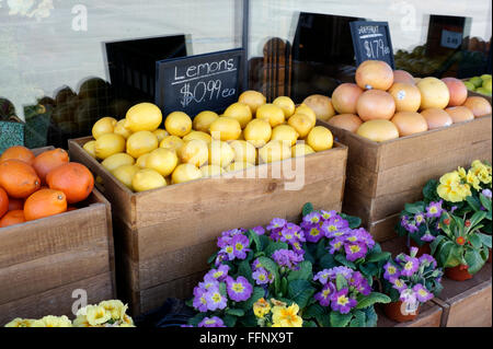 Lemons, oranges, grapefruits and flowers for sale in a produce market - Stock Photo