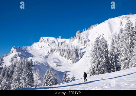 Latschenkopf and Idealhang, ski resort Brauneck, Lenggries, Isarwinkel, Bavarian Prealps, Upper Bavaria, Bavaria, - Stock Photo