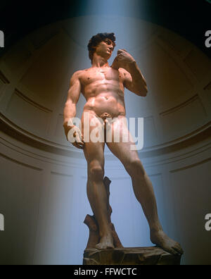 Statue of David by Michelangelo in the Galeria dell Accademia, Florence, Tuscany, Italy - Stock Photo