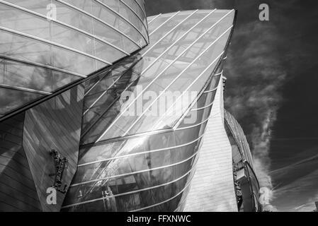 Fondation Louis Vuitton Paris, France Black and White Stock Photo