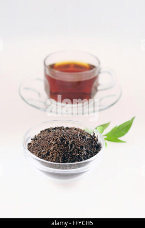 Tea dust in pot with tea cup on white background - Stock Photo