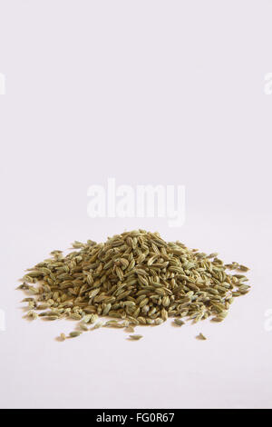 Spice , Fennel seeds Saunf Foeniculum vulgare on white background - Stock Photo