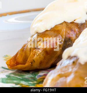Traditional Romanian cabbage rolls with cream on top - Stock Photo