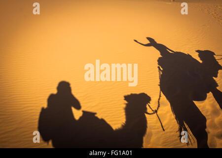 Caravan camels walking shadows projected over orange sand dunes - Stock Photo