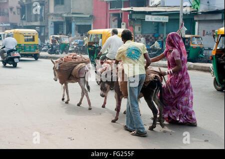 Man and woman carrying brick on donkeys back ; Ahmedabad ; Gujarat ; India - Stock Photo