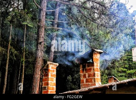 Smoke Emitting From Chimney Against Trees In Forest - Stock Photo