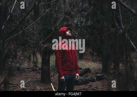 Young Man In Hooded Jacket Looking Up In Forest - Stock Photo