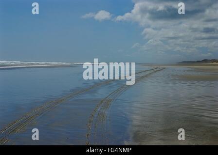 Tire Tracks On Beach - Stock Photo