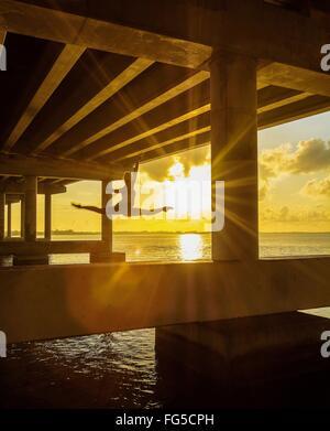 Woman Jumping Under Bridge At River During Sunset - Stock Photo