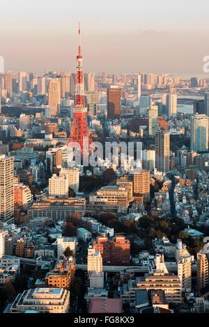 Tokyo, Japan - January 14, 2016: Tokyo Skyline at sunset. - Stock Photo