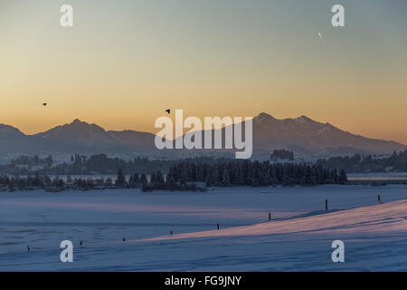 geography / travel, Germany, Bavaria, Schwangau, Allgaeu, view from the Vogelberg (peak) towards the Lake Forggen - Stock Photo