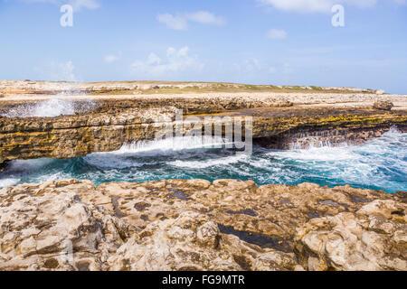Rocky coastline in Antigua Barbuda in the Caribbean Lesser ...