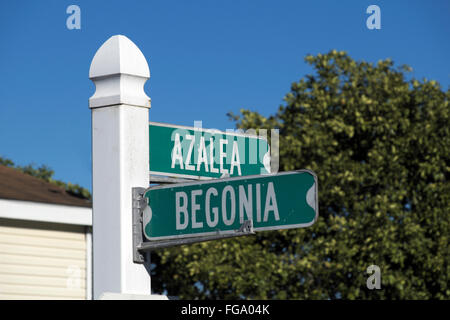 Corner street sign in an Alamo, Texas residential neighborhood. - Stock Photo