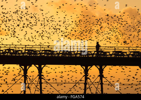 Aberystwyth Wales UK, Thursday  18 February 2016  UK weather: At the end of a day of clear skies and bitingly cold - Stock Photo