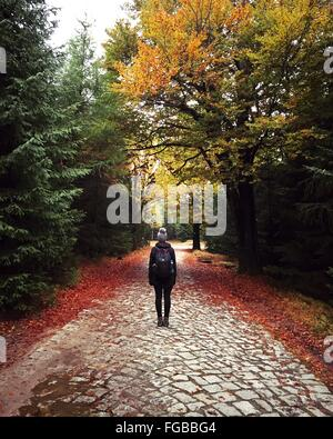 Rear View Of Woman With Backpack Standing On Street Amidst Trees In Forest During Autumn - Stock Photo