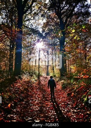 Rear View Of Boy At Forest During Autumn - Stock Photo