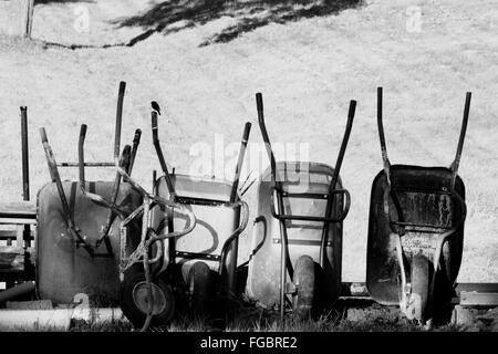 Wheelbarrows On Field - Stock Photo