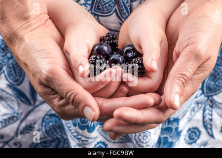 Female hands embracing child hands holding blackberries and blueberries closeup - Stock Photo