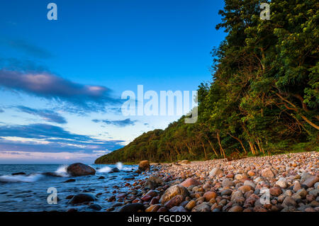 Stony beach with coastal forest, Baltic Sea, Jasmund National Park, Jasmund peninsula, Rügen Island, Mecklenburg - Stock Photo