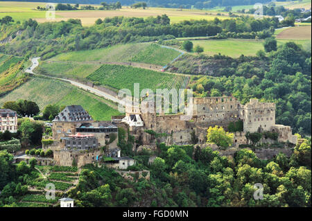 Rheinfels Castle above town Sankt Goar and surrounding terraced vineyards, Upper Middle Rhine Valley, Germany - Stock Photo