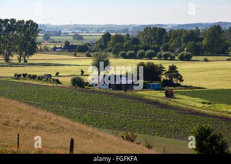 Swedish farmhouse and farmland, near Loderup, Skane, South Sweden, Sweden, Scandinavia, Europe - Stock Photo