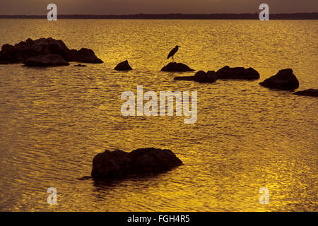 Lake Sibhayi also known as Lake Sibaya  Maputaland KwaZulu-Natal South Africa. - Stock Photo