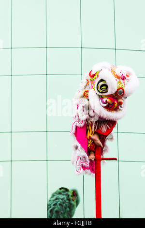 Chinese new year Phnom Penh Dragon dancers perform in the streets - Stock Photo