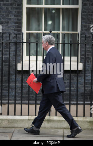 Downing Street, London, UK. 20th February, 2016. Defence Secretary Michael Fallon arrives at No. 10. Cabinet Ministers - Stock Photo