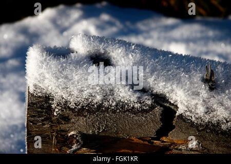 Schneekristalle auf Baum, Winterlandschaft, Harz. - Stock Photo