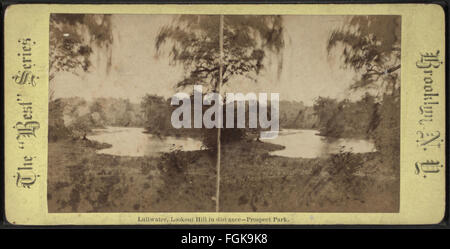 Lullwater, Lookout Hill in distance, Prospect Park, from Robert N. Dennis collection of stereoscopic views - Stock Photo