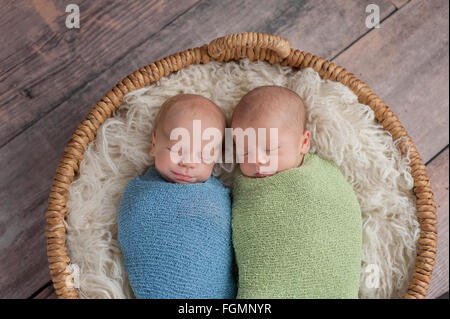 Twin, Newborn, Baby Boys Sleeping in a Basket. - Stock Photo
