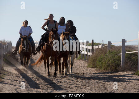 People riding horses, Tijuana River National Estuarine Research Reserve, California, USA - Stock Photo