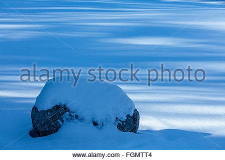 Winter snow on rock and tree shadows in Toronto Ontario Canada covered pattern season snowfall bumpy rock stone - Stock Photo
