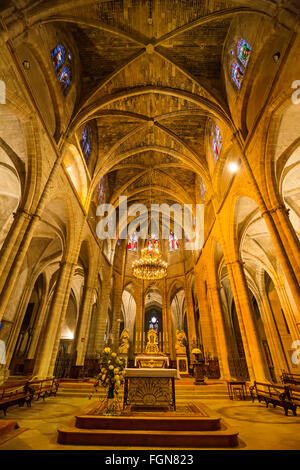 Old Cathedral Bazas, Saint James way. Gironde Aquitaine France - Stock Photo