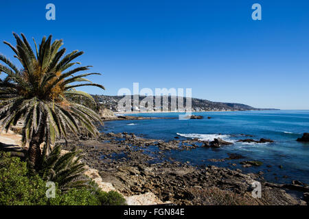 A spectacular view looking south along the coast at Laguna Beach California with red Aloe Vera and palm trees on - Stock Photo