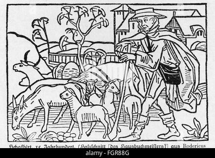 agriculture, stock farming, sheep, shepherd, 15th century, after woodcut, from: Rodericus Zamorensis, 'Speculum - Stock Photo
