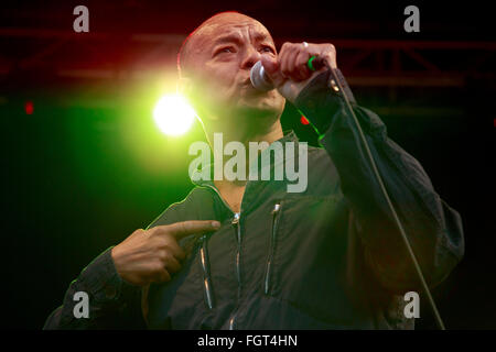 Roland Gift, Village Green Music and Arts Festival, Southend-on-Sea, Essex © Clarissa Debenham / Alamy - Stock Photo