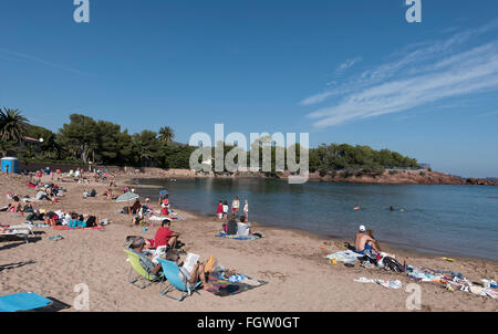 the beach at agay var provence france stock photo royalty free image 53039079 alamy. Black Bedroom Furniture Sets. Home Design Ideas