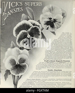 Vick's garden and floral guide (1907) - Stock Photo