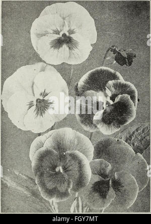 Currie's farm and garden annual - spring 1930 (1930) - Stock Photo