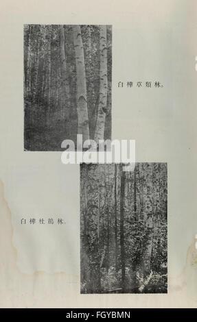 Da xing an ling sen lin zi yuan diao cha bao gao (1954) - Stock Photo